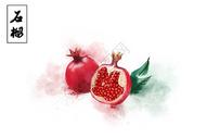 夏日系列水果石榴图片