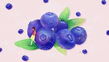 蓝莓少女图片