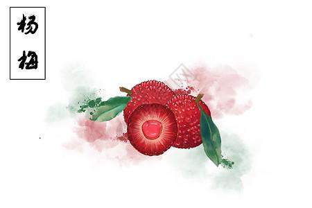 杨梅夏日水果插画图片