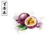 百香果水果插画图片