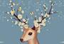 可爱雏菊小鹿图片