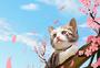 猫和樱花图片