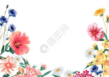 手绘小雏菊绿植背景素材高清图片