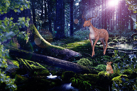 森林创意场景图片
