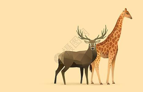 lowpoly折纸动物图片