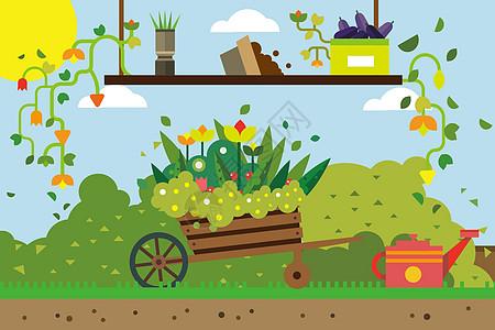 植物花卉园艺图片