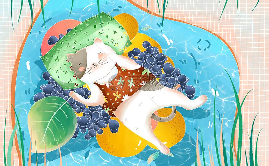 夏季 猫咪图片