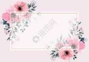 植物花卉背景图片
