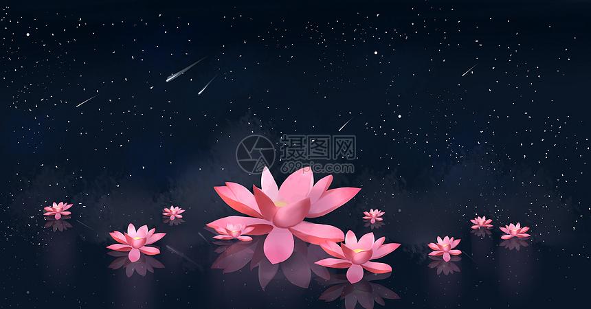 夜池荷花图片