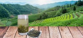 茶与饮食健康400262647图片