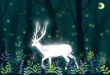 森林白鹿高清图片