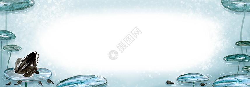 青蛙蝌蚪荷叶留白背景图片