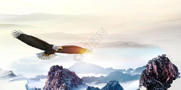 雄鹰展翅图片