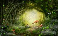 梦幻森林空间图片