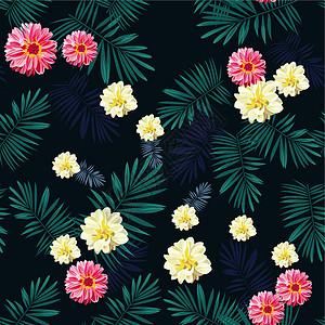 热带雨林花和叶子高清图片