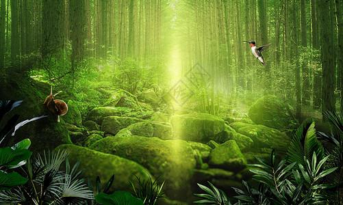 绿光森林场景图片