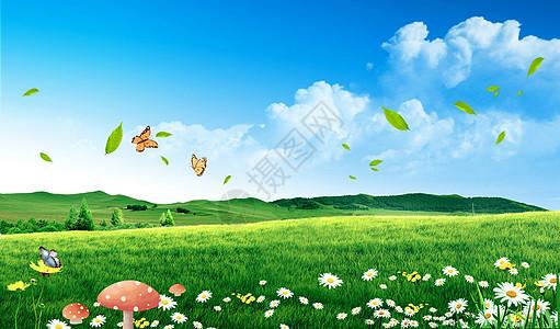 清新草原图片