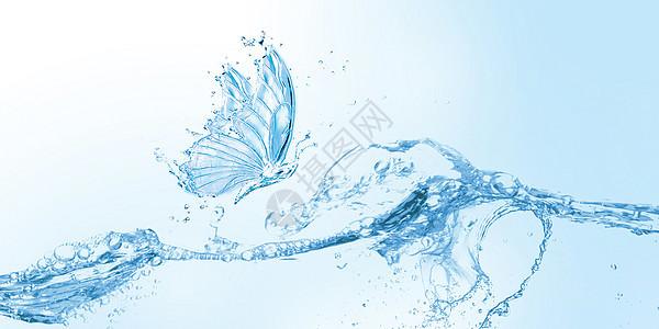 水蝴蝶图片