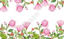 水彩背景花卉图片