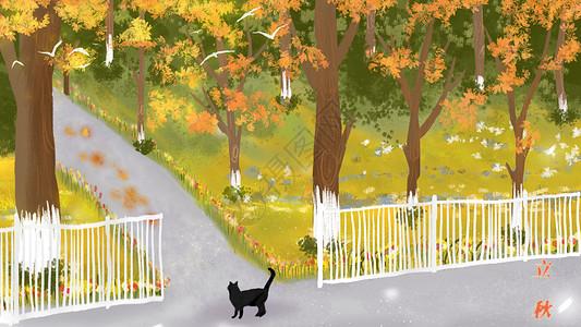 森林里漫步的猫咪图片