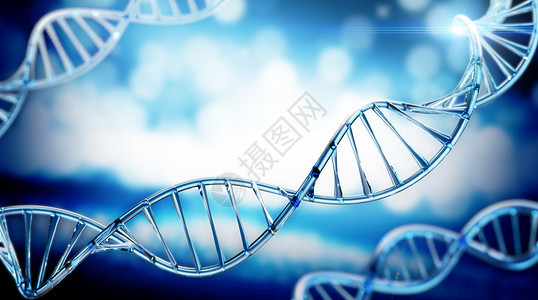 DNA基因螺旋结构图片