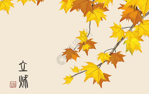 立秋枫叶图片