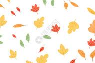 秋天树叶背景图片图片