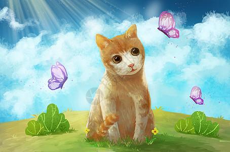 与蝴蝶玩耍的可爱小猫图片
