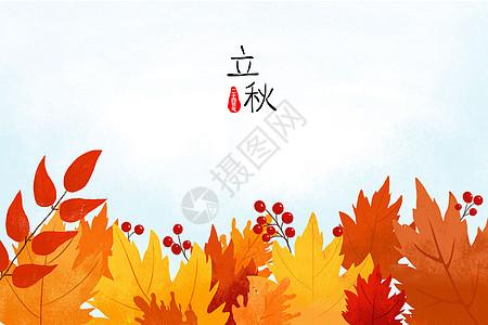 二十四节气立秋枫叶插画背景图图片