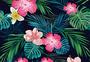 热带叶子花组合图片