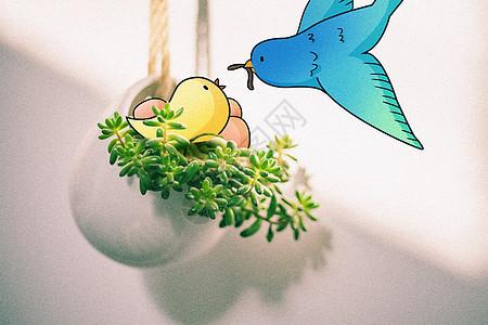 小鸟吃虫子创意摄影插画图片