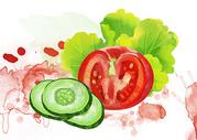 蔬菜插画图片