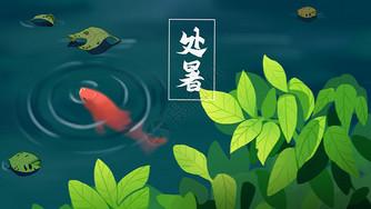 清凉池塘锦鲤处暑图片