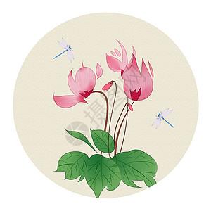 中国风花卉图片