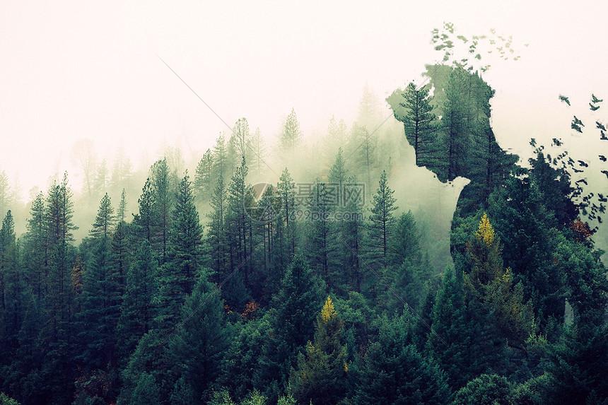 创意森林场景图片