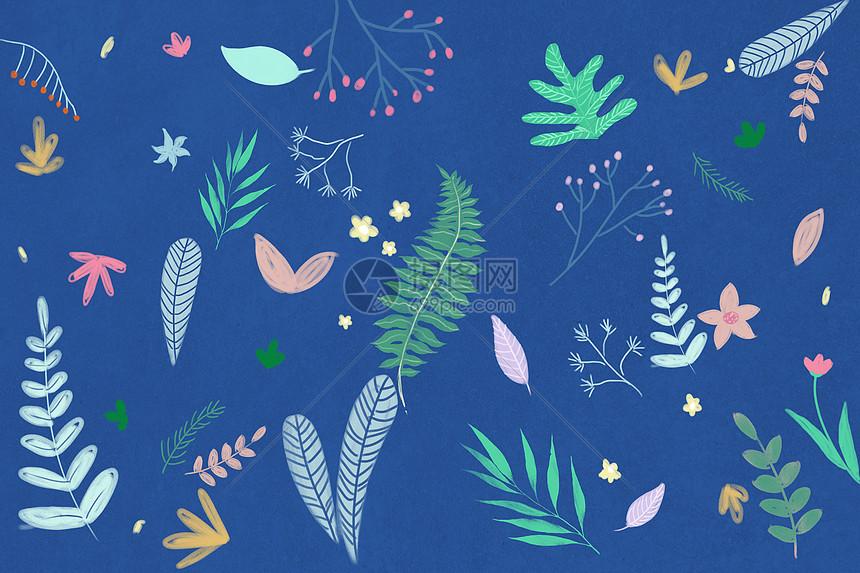 手绘花卉植物背景图片