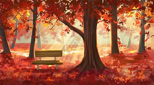 秋天的红叶林图片
