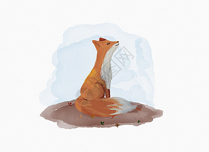 可爱的小狐狸图片