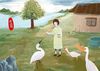 白露小女孩喂鹅图片
