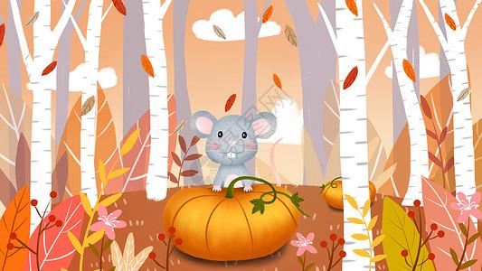 秋分卡通动物插画图片