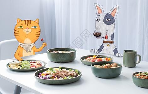 小猫小狗吃饭图片