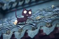 屋檐上的小猫图片