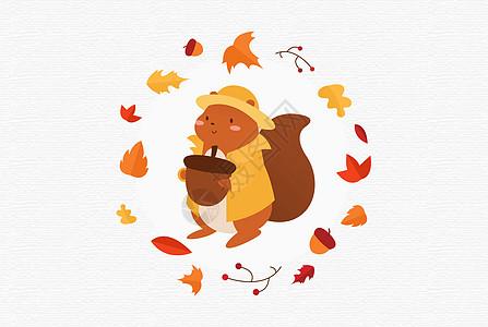 可爱的小松鼠图片