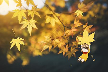 秋天去旅行图片