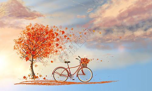枫树下的自行车图片