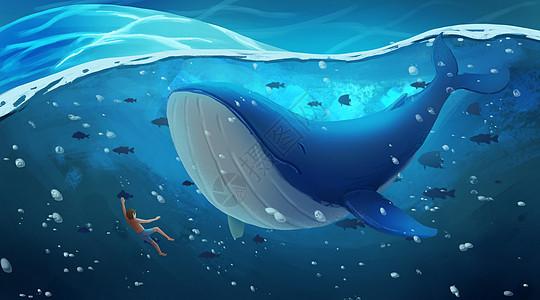 海底与鲸鱼一起遨游图片