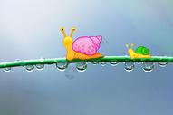 蜗牛过桥图片