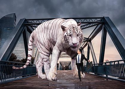 逃离恐龙图片