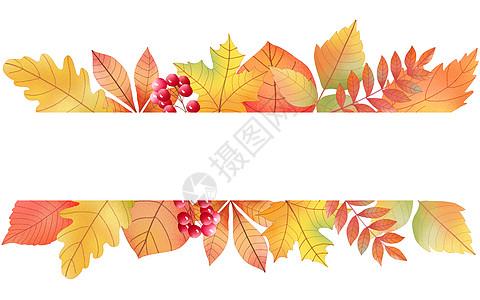 秋天水彩枫叶装饰框图片