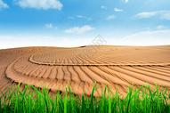 土地沙漠化图片